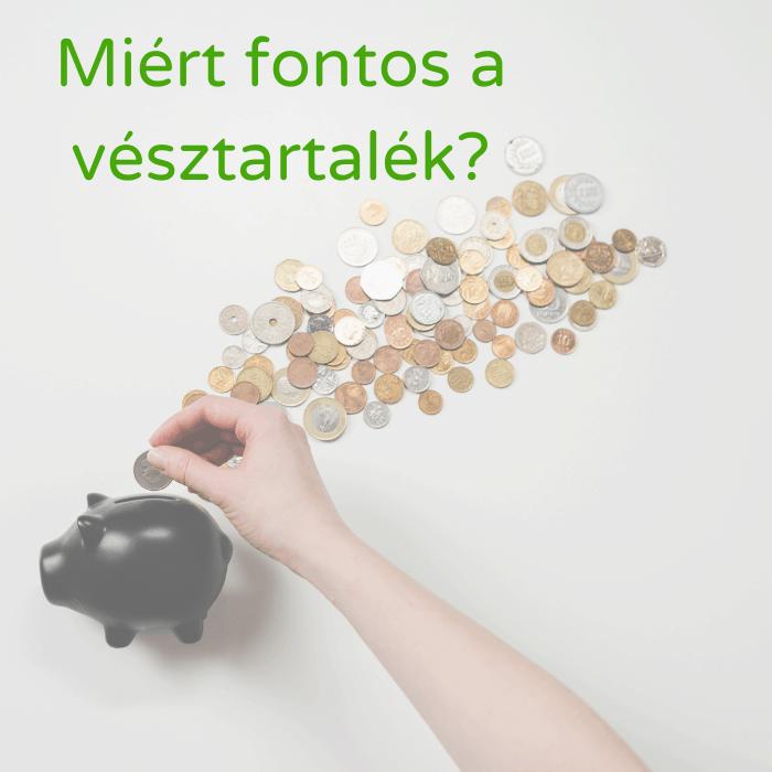 A vésztartalék összegyűjtésének alapja a malacperselyben gyűjtögetett pénz, ami a képen is látható.